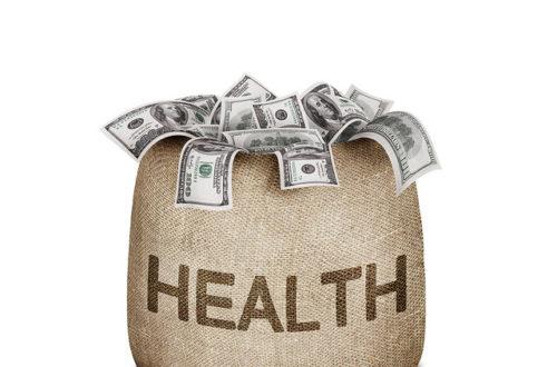 Article : Journée mondiale de la santé 2014 : attention aux maladies à transmission vectorielle